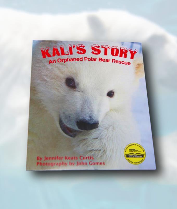 KALI'S PAPERBACK,9781628552171